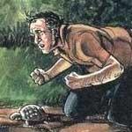 Želví hrátky