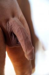 penis-021