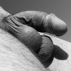 penis-067