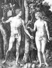 Albrecht Dürer: Adam a Eva